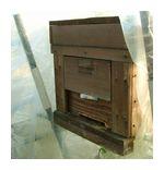 苺ハウス内の蜂箱