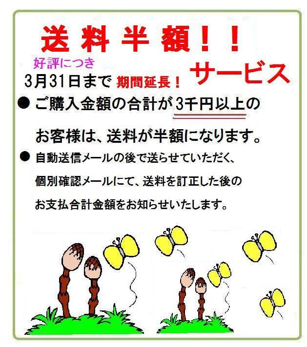ご購入金額3千円以上 送料半額!好評につき3月末まで期間延長!