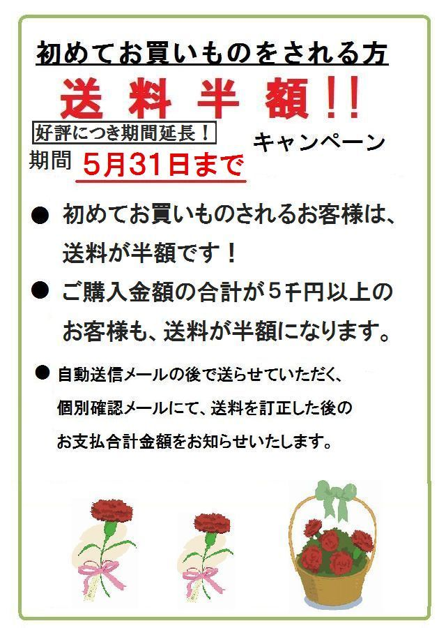 初めてお買い物をされるお客様 送料半額1 ご購入金額5千円以上のお客様も送料半額!