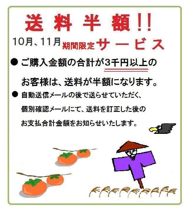 ご購入金額3千円以上 送料半額!10,11月期間限定