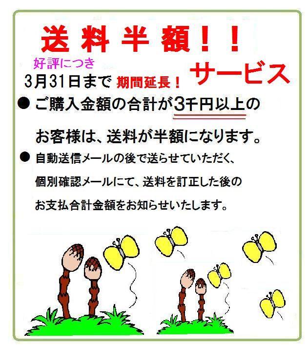 ご購入金額3千円以上 送料半額!3月末まで期間延長!